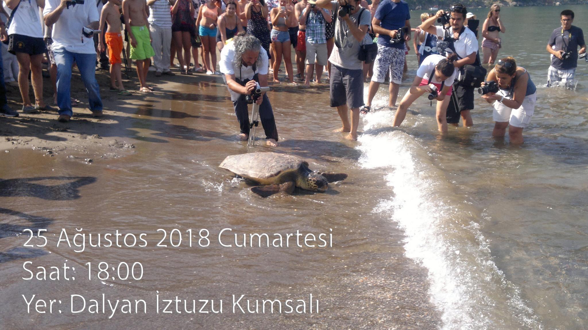 Turtle Beach event
