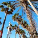Palm street Marmaris
