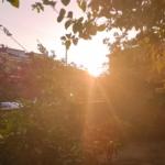 Marmaris Morning Views